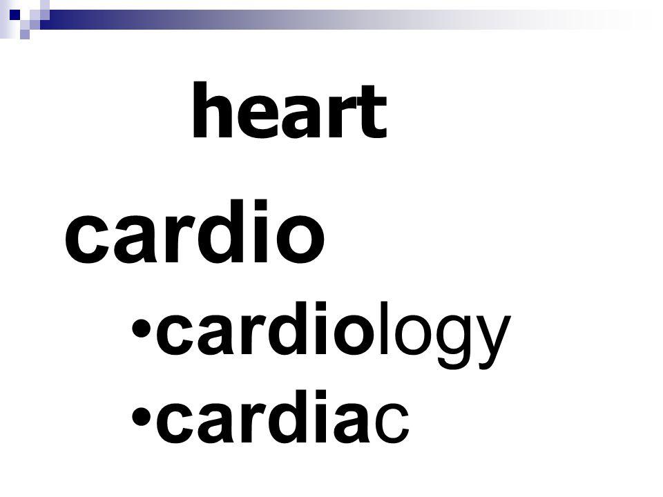 heart cardio cardiology cardiac