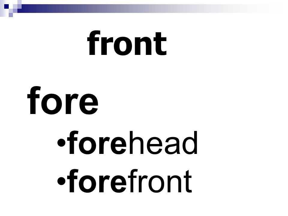 front fore forehead forefront