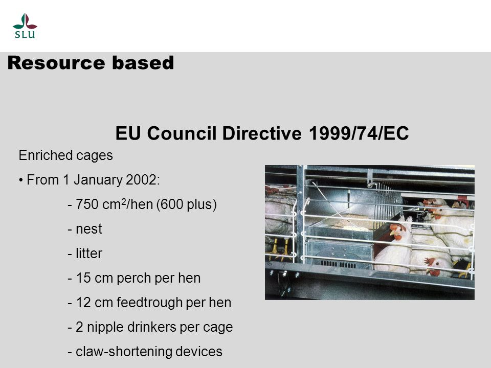 Resource based EU Council Directive 1999/74/EC Enriched cages From 1 January 2002: - 750 cm 2 /hen (600 plus) - nest - litter - 15 cm perch per hen - 12 cm feedtrough per hen - 2 nipple drinkers per cage - claw-shortening devices