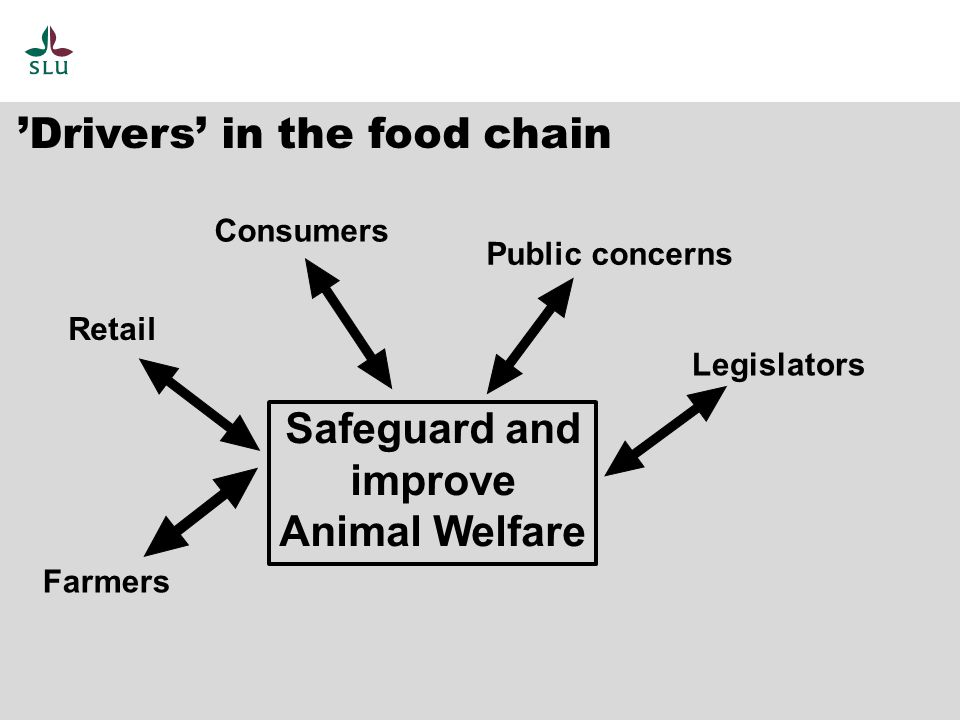 Drivers in the food chain Public concerns