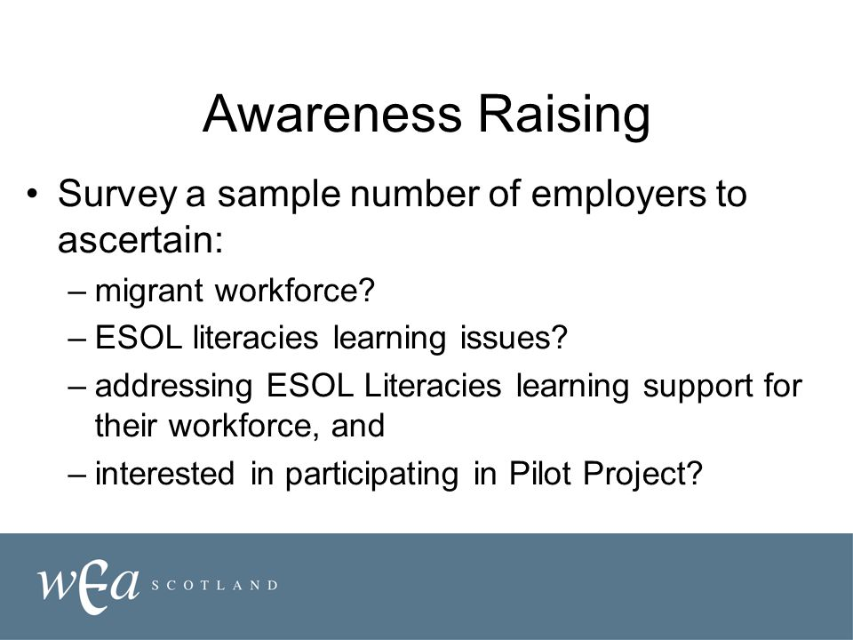 Awareness Raising Survey a sample number of employers to ascertain: –migrant workforce? –ESOL literacies learning issues? –addressing ESOL Literacies