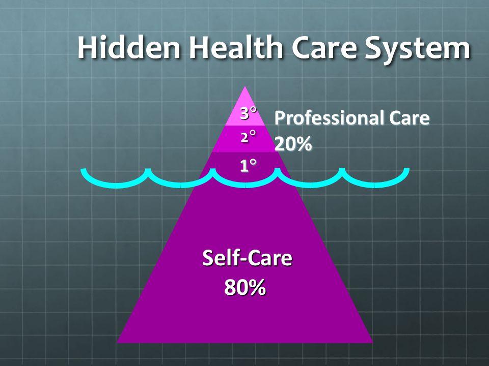 Hidden Health Care System Self-Care Self-Care 80% 80% Professional Care 20% 2  2  1  1  3  3 