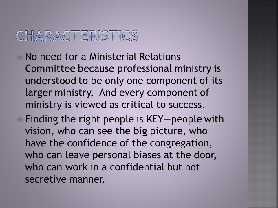  No need for a Ministerial Relations Committee because professional ministry is understood to be only one component of its larger ministry.