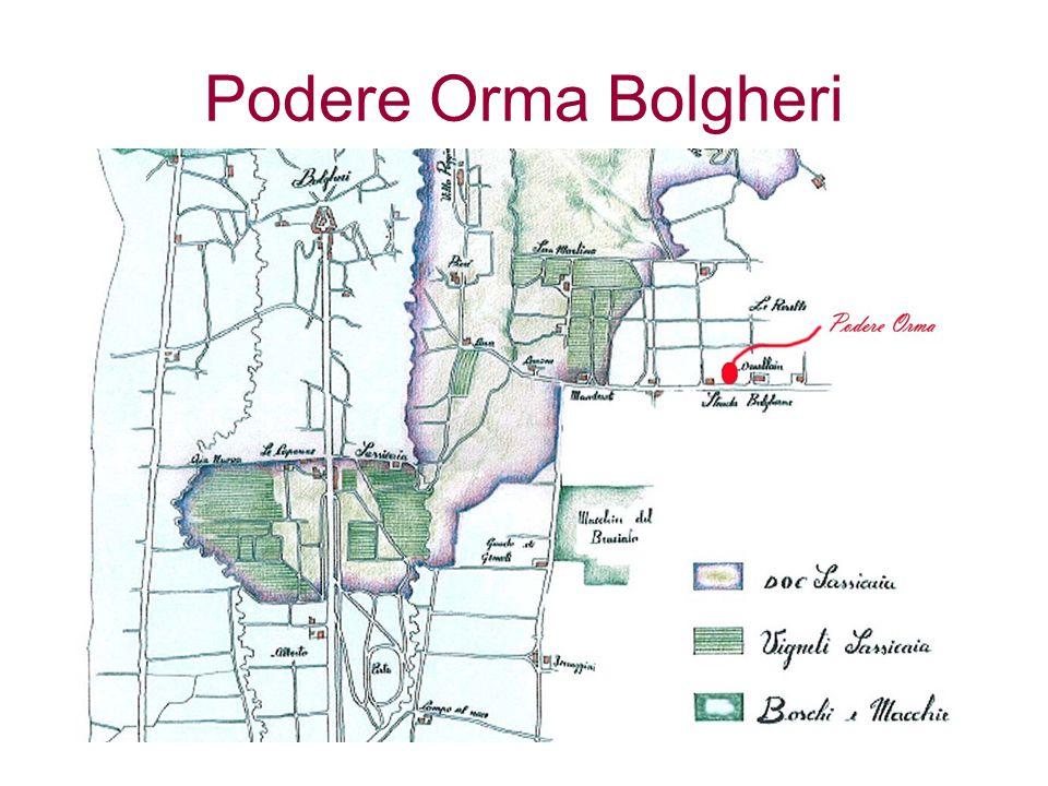 Podere Orma Bolgheri