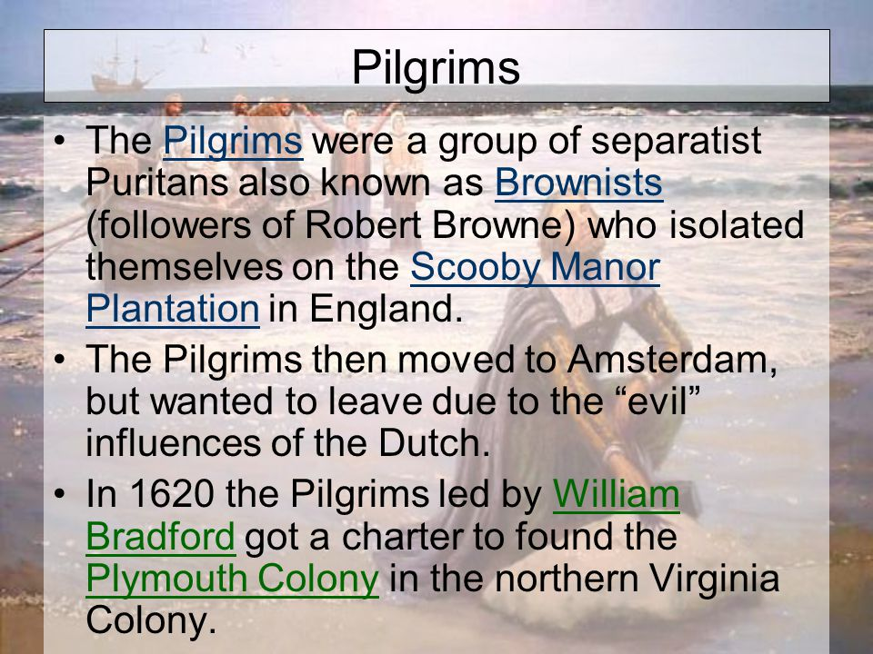 Pilgrims The Pilgrims were a group of separatist Puritans also known as Brownists (followers of Robert Browne) who isolated themselves on the Scooby Manor Plantation in England.