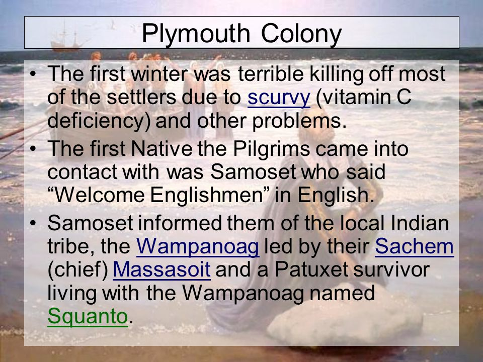 Plymouth Colony The first winter was terrible killing off most of the settlers due to scurvy (vitamin C deficiency) and other problems.