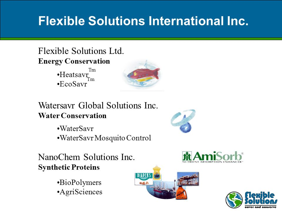 FSI Management Flexible Solutions International Inc.