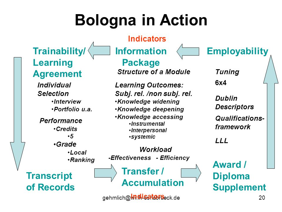 gehmlich@wi.fh-osnabrueck.de20 Bologna in Action Indicators EmployabilityInformation Package Trainability/ Learning Agreement Award / Diploma Supplement Transcript of Records Transfer / Accumulation Tuning Dublin Descriptors Structure of a Module Learning Outcomes: Subj.