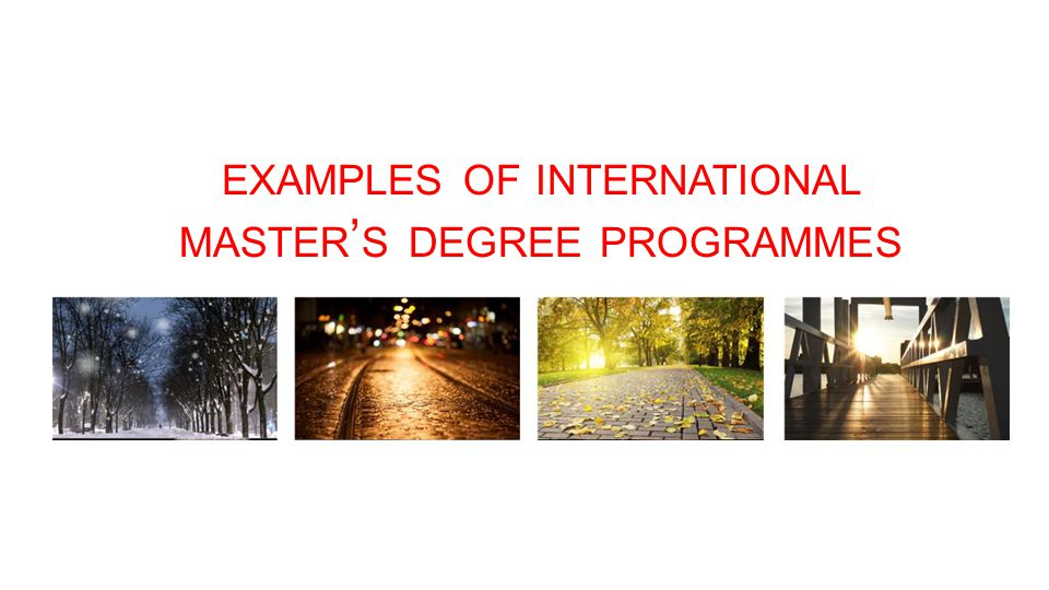 EXAMPLES OF INTERNATIONAL MASTER ' S DEGREE PROGRAMMES