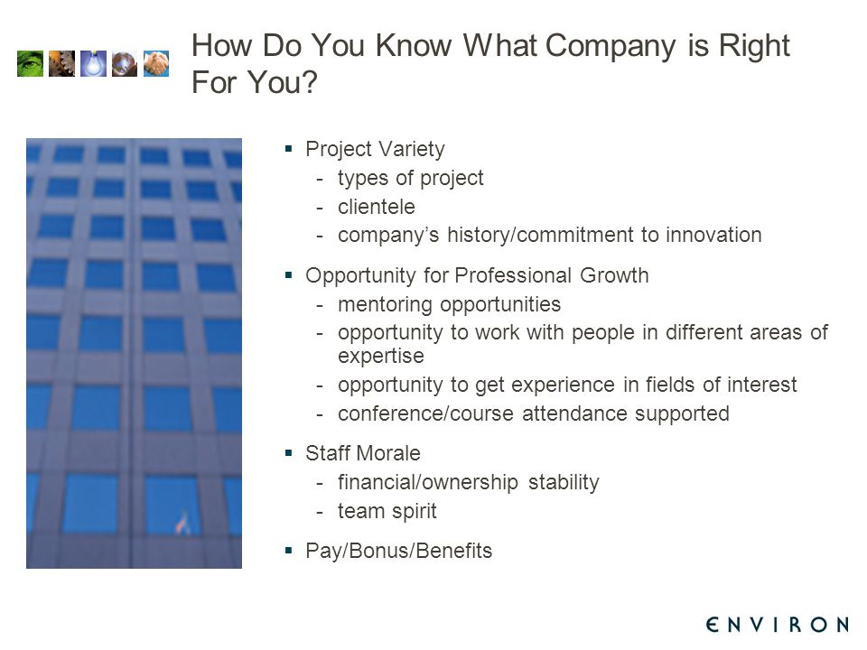 How Do You Know What Company is Right For You.