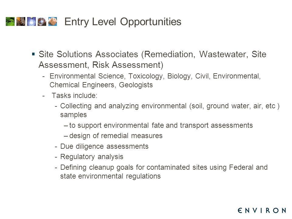 Entry Level Opportunities  Site Solutions Associates (Remediation, Wastewater, Site Assessment, Risk Assessment) -Environmental Science, Toxicology, Biology, Civil, Environmental, Chemical Engineers, Geologists - Tasks include: -Collecting and analyzing environmental (soil, ground water, air, etc ) samples –to support environmental fate and transport assessments –design of remedial measures -Due diligence assessments -Regulatory analysis -Defining cleanup goals for contaminated sites using Federal and state environmental regulations