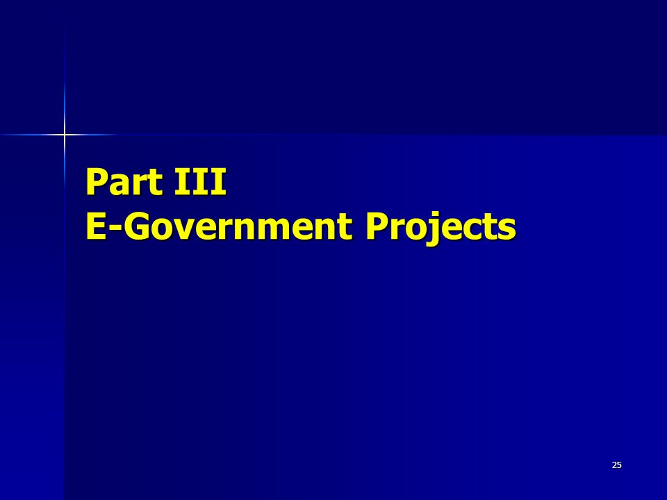 25 Part III E-Government Projects