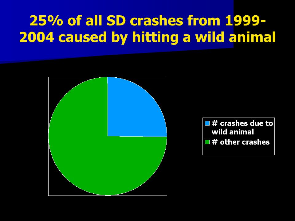 25% of all SD crashes from 1999- 2004 caused by hitting a wild animal