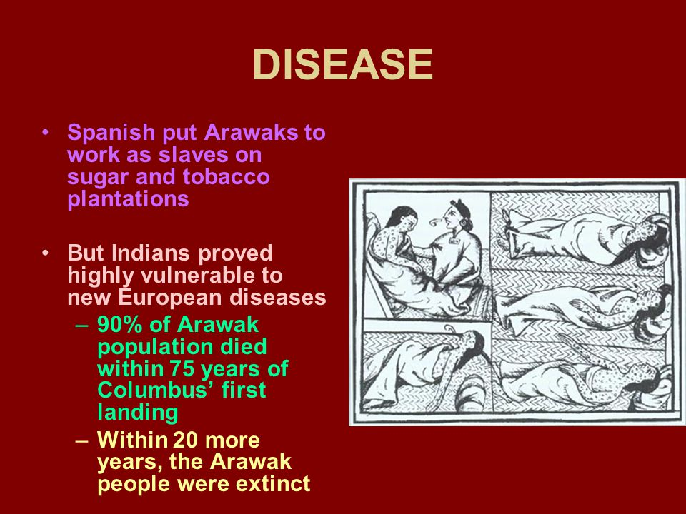 DISEASE Spanish put Arawaks to work as slaves on sugar and tobacco plantations But Indians proved highly vulnerable to new European diseases –90% of Arawak population died within 75 years of Columbus' first landing –Within 20 more years, the Arawak people were extinct