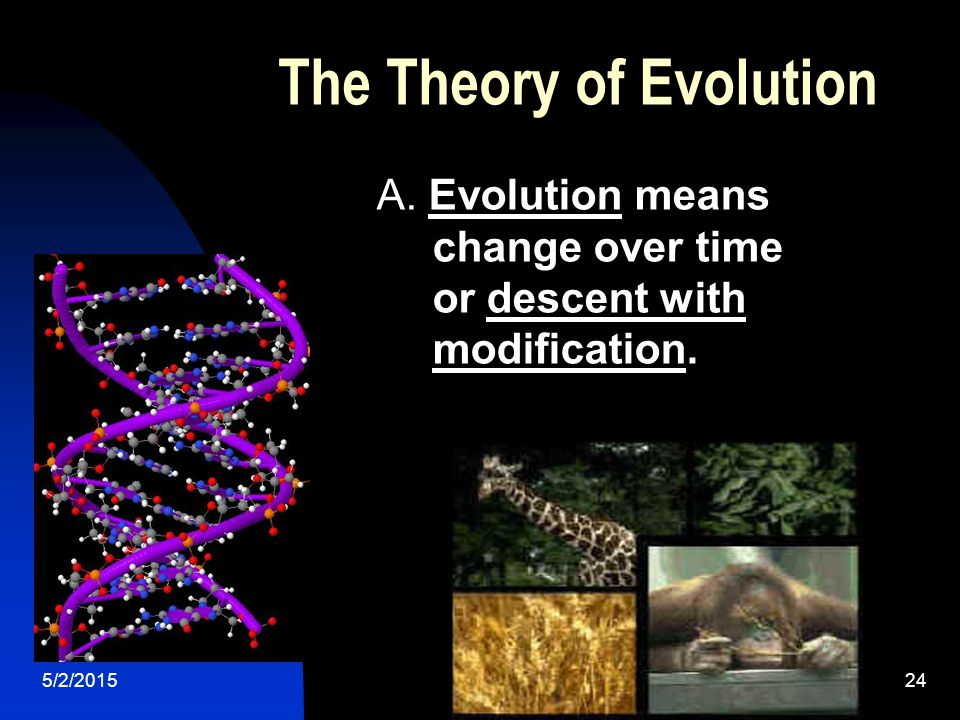 5/2/201524 The Theory of Evolution A.
