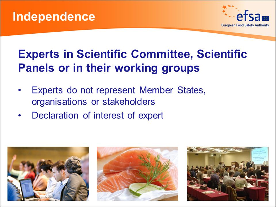 Experts in Scientific Committee, Scientific Panels or in their working groups Experts do not represent Member States, organisations or stakeholders De