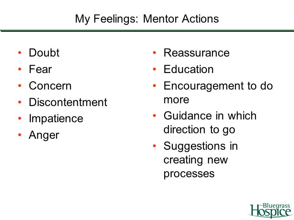 My Feelings: Mentor Actions Doubt Fear Concern Discontentment Impatience Anger Reassurance Education Encouragement to do more Guidance in which direct
