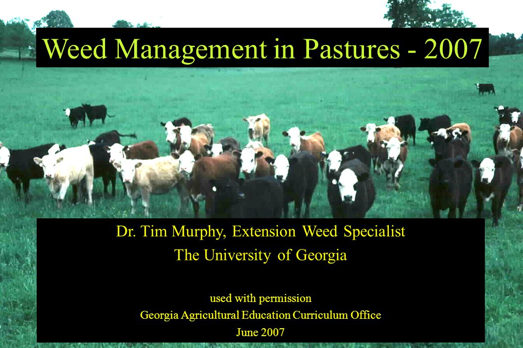 Weed Management in Pastures - 2007 Dr.