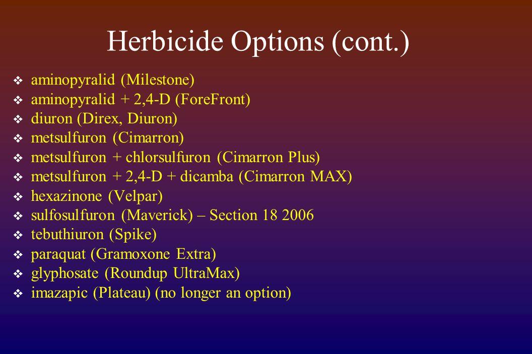 Herbicide Options (cont.)  aminopyralid (Milestone)  aminopyralid + 2,4-D (ForeFront)  diuron (Direx, Diuron)  metsulfuron (Cimarron)  metsulfuron + chlorsulfuron (Cimarron Plus)  metsulfuron + 2,4-D + dicamba (Cimarron MAX)  hexazinone (Velpar)  sulfosulfuron (Maverick) – Section 18 2006  tebuthiuron (Spike)  paraquat (Gramoxone Extra)  glyphosate (Roundup UltraMax)  imazapic (Plateau) (no longer an option)