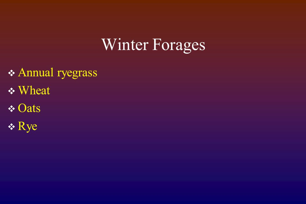 Winter Forages  Annual ryegrass  Wheat  Oats  Rye