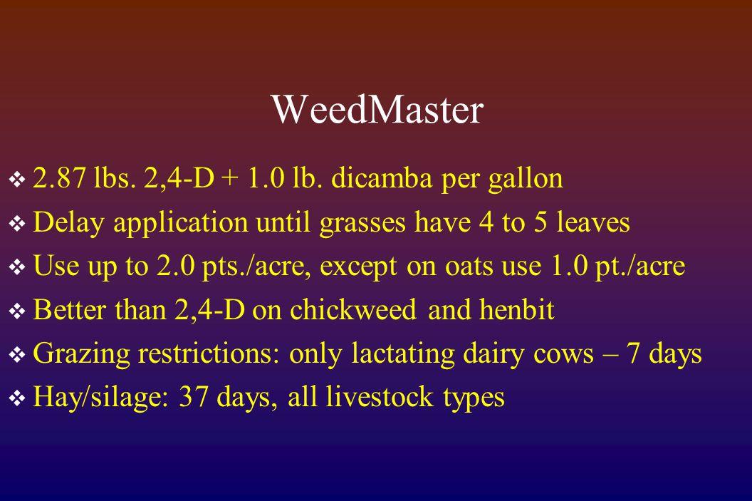 WeedMaster  2.87 lbs. 2,4-D + 1.0 lb.