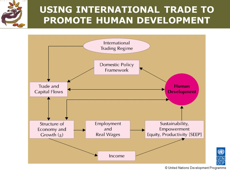 © United Nations Development Programme THE ASIA-PACIFIC EXPERIENCE At the forefront of globalization Sharp growth in exports, but also in imports Rapid decline in poverty, but a rise in inequality