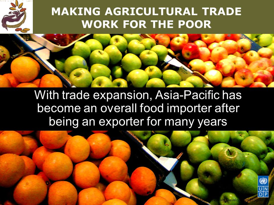 © United Nations Development Programme MAKING AGRICULTURAL TRADE WORK FOR THE POOR With trade expansion, Asia-Pacific has become an overall food importer after being an exporter for many years