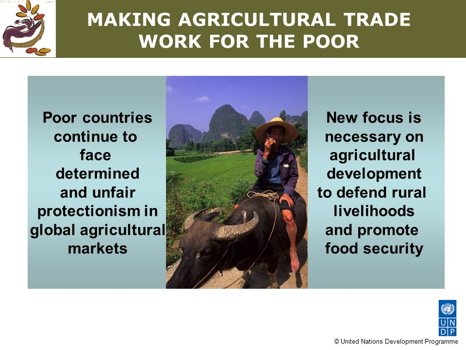 © United Nations Development Programme MAKING AGRICULTURAL TRADE WORK FOR THE POOR Poor countries continue to face determined and unfair protectionism in global agricultural markets New focus is necessary on agricultural development to defend rural livelihoods and promote food security