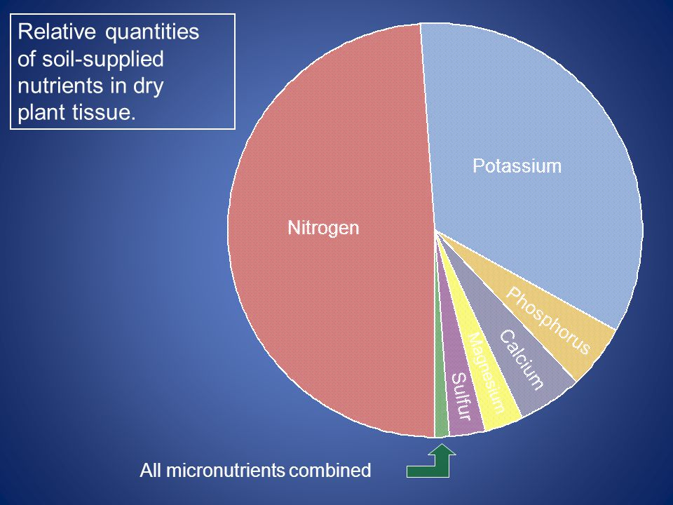 Nitrogen Relative quantities of soil-supplied nutrients in dry plant tissue.