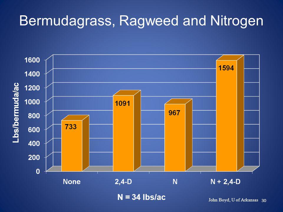 30 Bermudagrass, Ragweed and Nitrogen Lbs/bermuda/ac N = 34 lbs/ac John Boyd, U of Arkansas