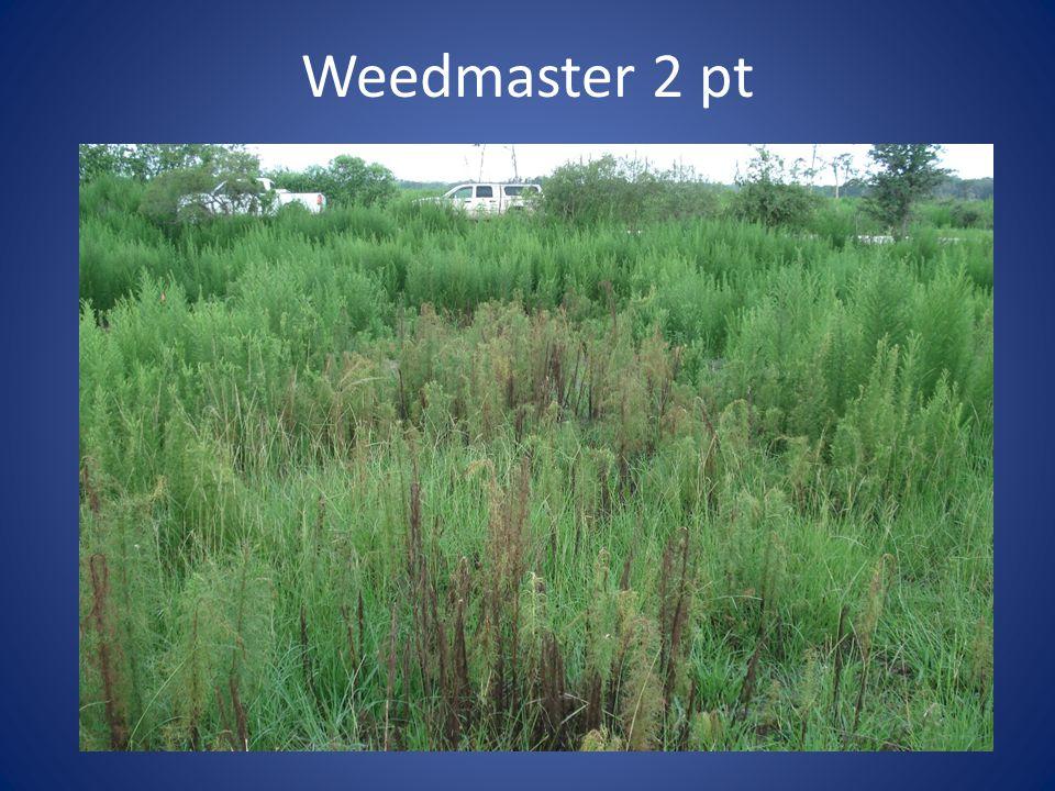 Weedmaster 2 pt