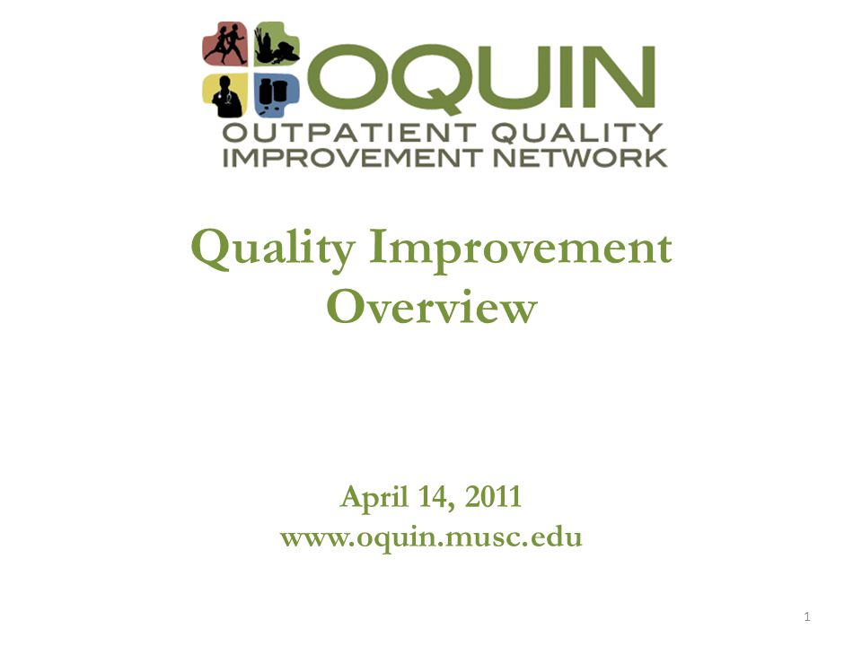 Quality Improvement Overview April 14, 2011 www.oquin.musc.edu 1