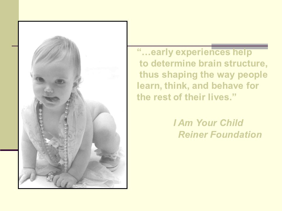 …early experiences help to determine brain structure, thus shaping the way people learn, think, and behave for the rest of their lives. I Am Your Child Reiner Foundation
