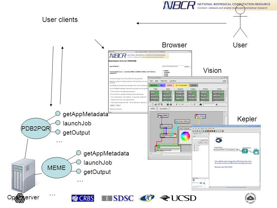getAppMetadata launchJob getOutput … PDB2PQR getAppMetadata launchJob getOutput … MEME … Opal server User Vision Kepler User clients Browser