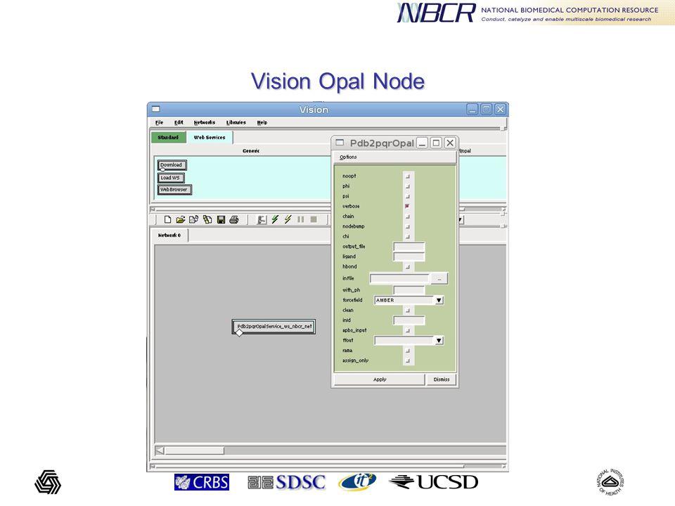 Vision Opal Node