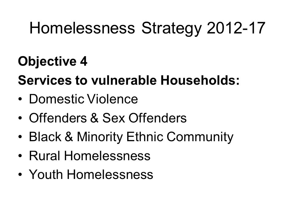 Homelessness Strategy 2012-17 Objective 4 Services to vulnerable Households: Domestic Violence Offenders & Sex Offenders Black & Minority Ethnic Community Rural Homelessness Youth Homelessness