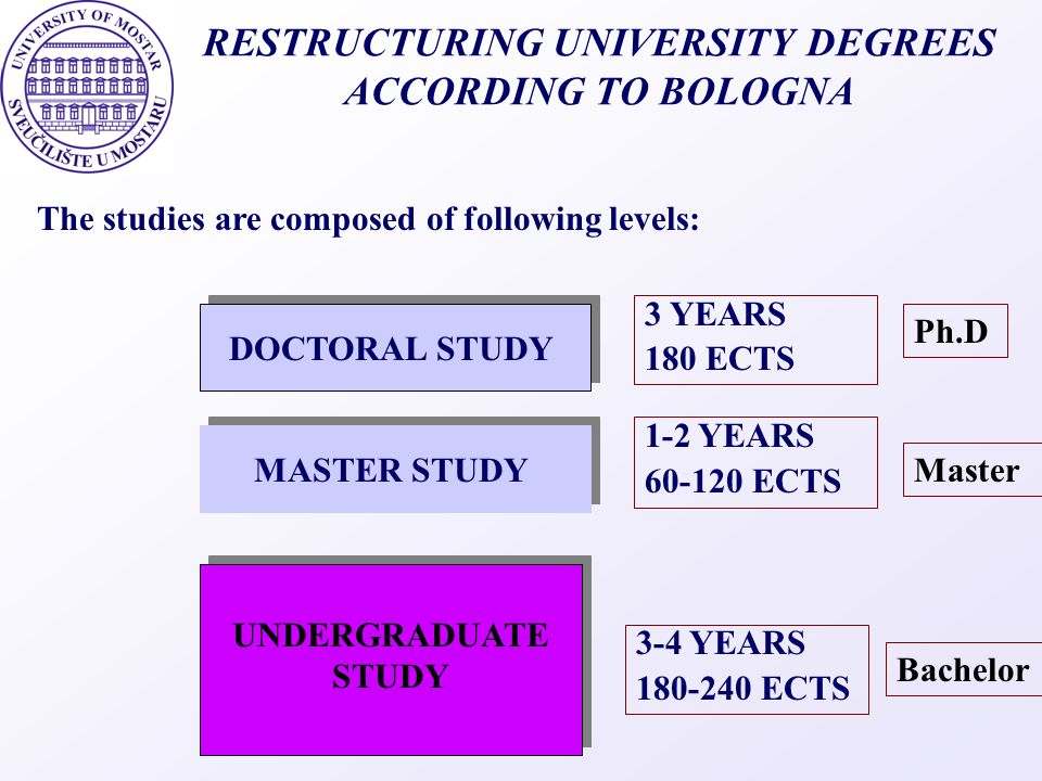 FURTHER ACTIVITIES IT support of the processes at University Formulate local, out-put oriented objectives in addition to national / regional ones Focus on continuous development Develop a system of indicators based on quantitative data and questionnaires Make regular assessments using international teams Internationalisation of faculty and student exchangesInternationalisation of faculty and student exchanges Total quality approach