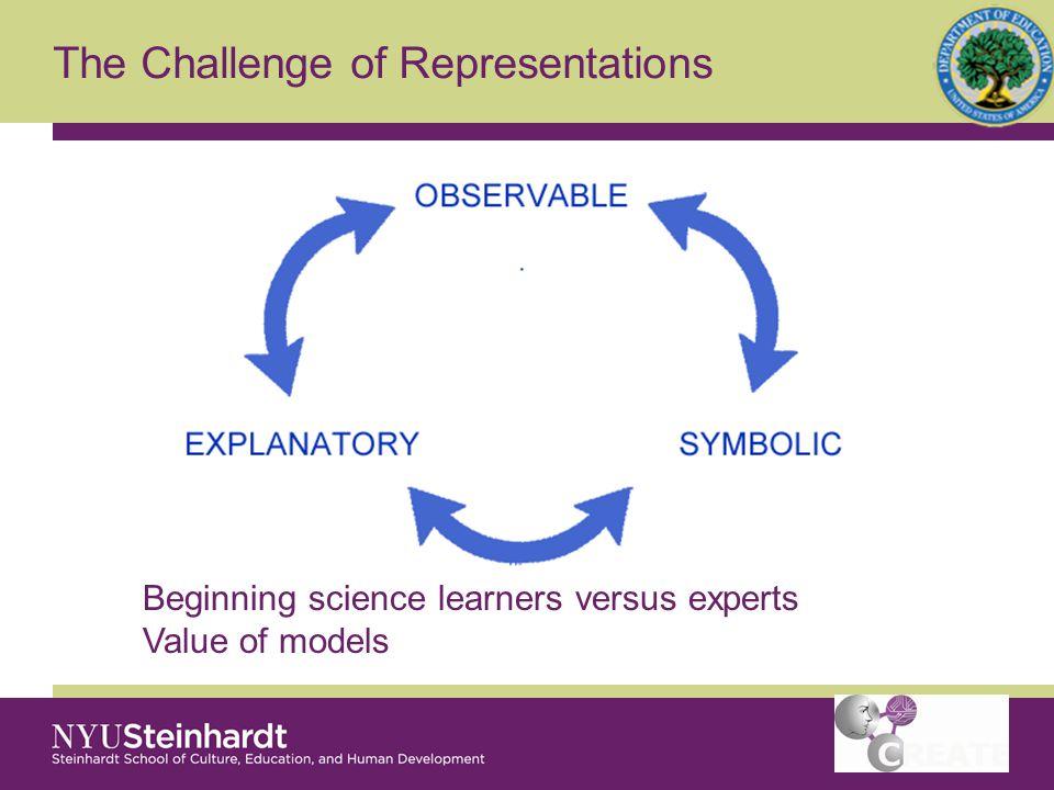 The Challenge of Representations Simulation design