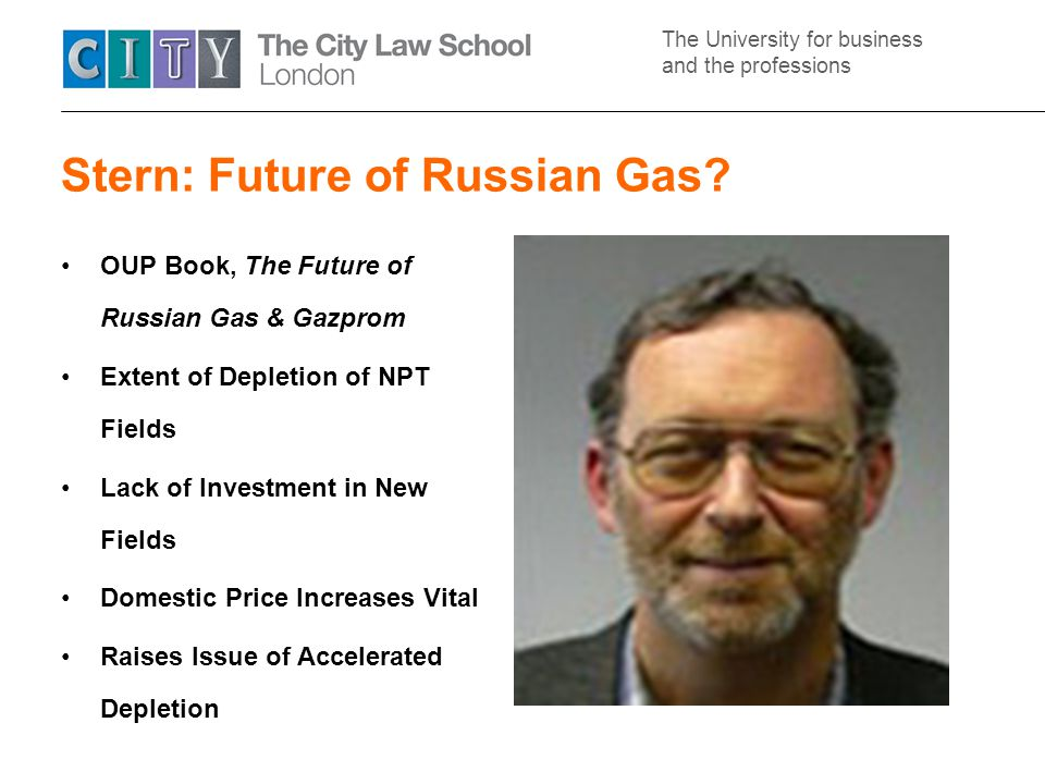 The University for business and the professions Stern: Future of Russian Gas.