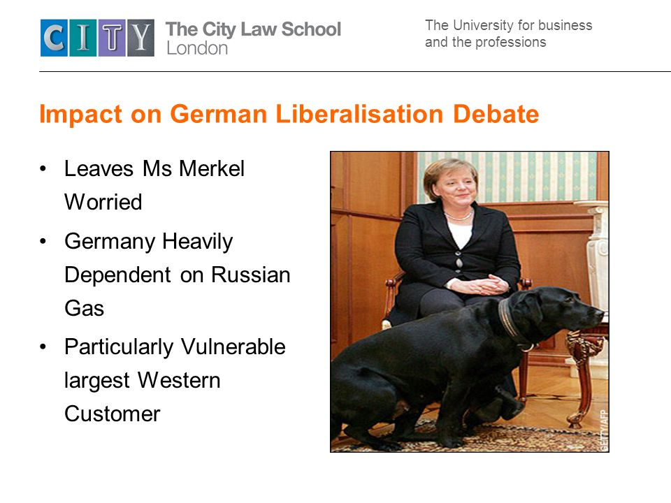 The University for business and the professions Impact on German Liberalisation Debate Leaves Ms Merkel Worried Germany Heavily Dependent on Russian Gas Particularly Vulnerable largest Western Customer