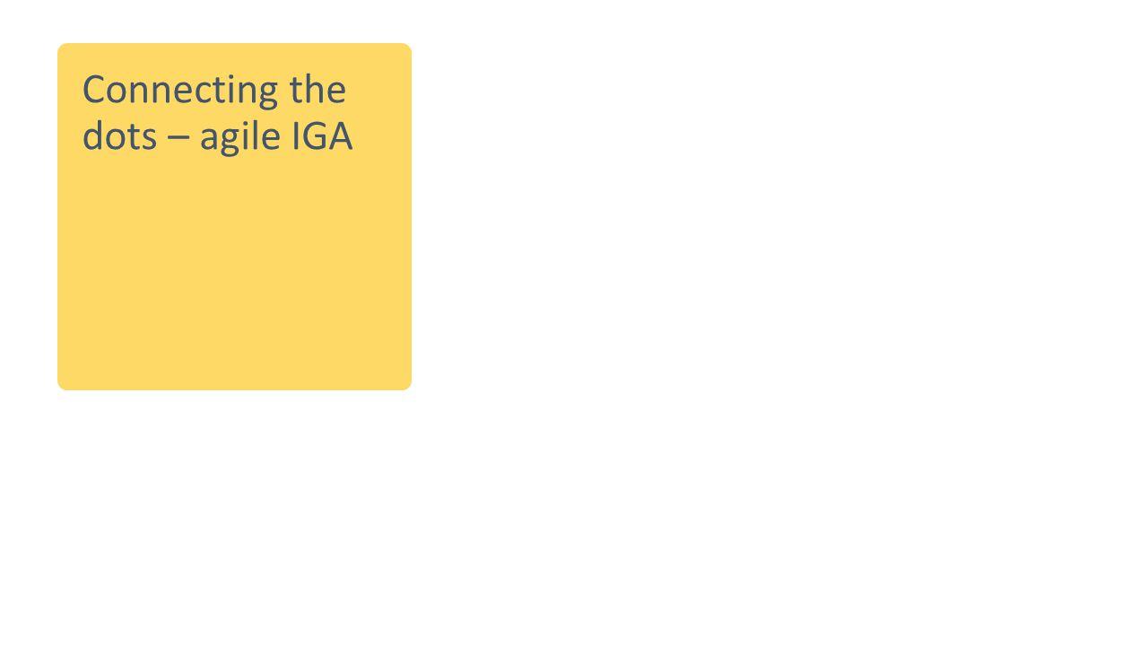 Connecting the dots – agile IGA