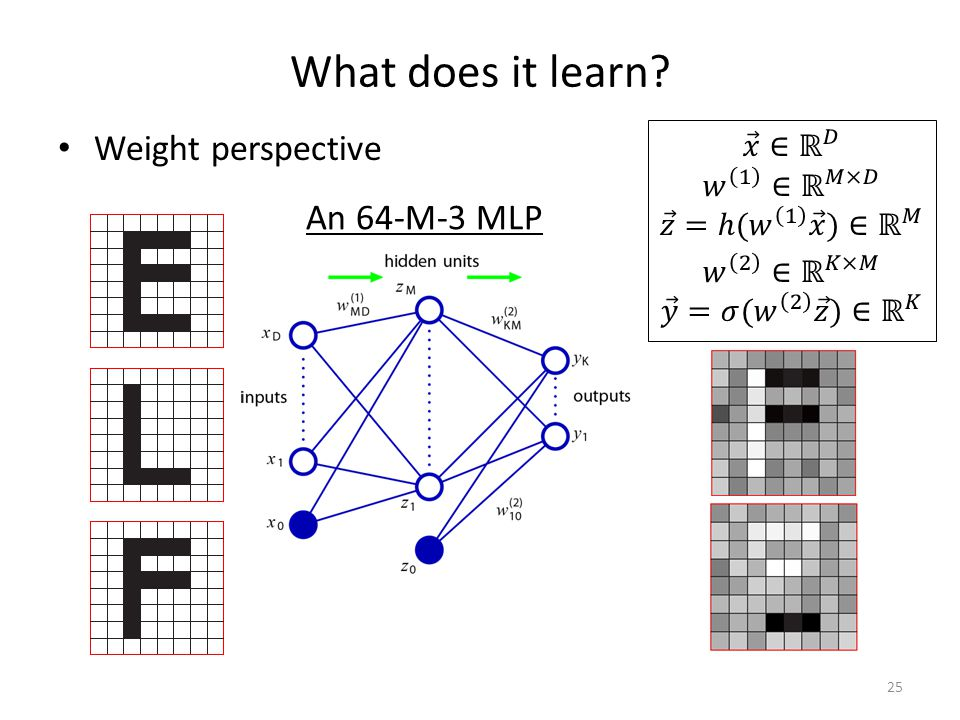What does it learn Weight perspective 25 An 64-M-3 MLP