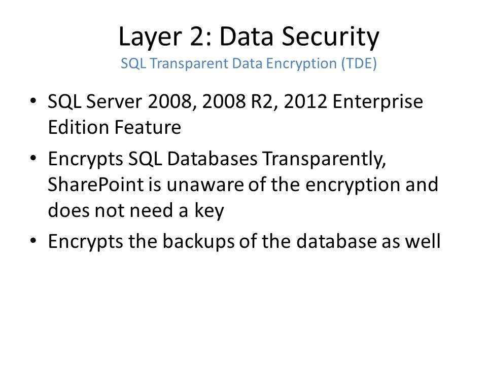 Layer 2: Data Security TDE vs.