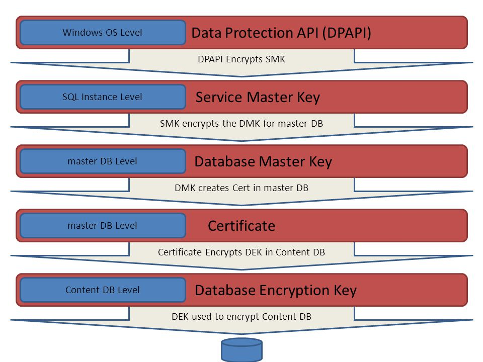 Key and Cert Hierarchy SMK encrypts the DMK for master DB Service Master Key SQL Instance Level DPAPI Encrypts SMK Data Protection API (DPAPI) Windows OS Level DMK creates Cert in master DB Database Master Key master DB Level Certificate Encrypts DEK in Content DB Certificate master DB Level DEK used to encrypt Content DB Database Encryption Key Content DB Level