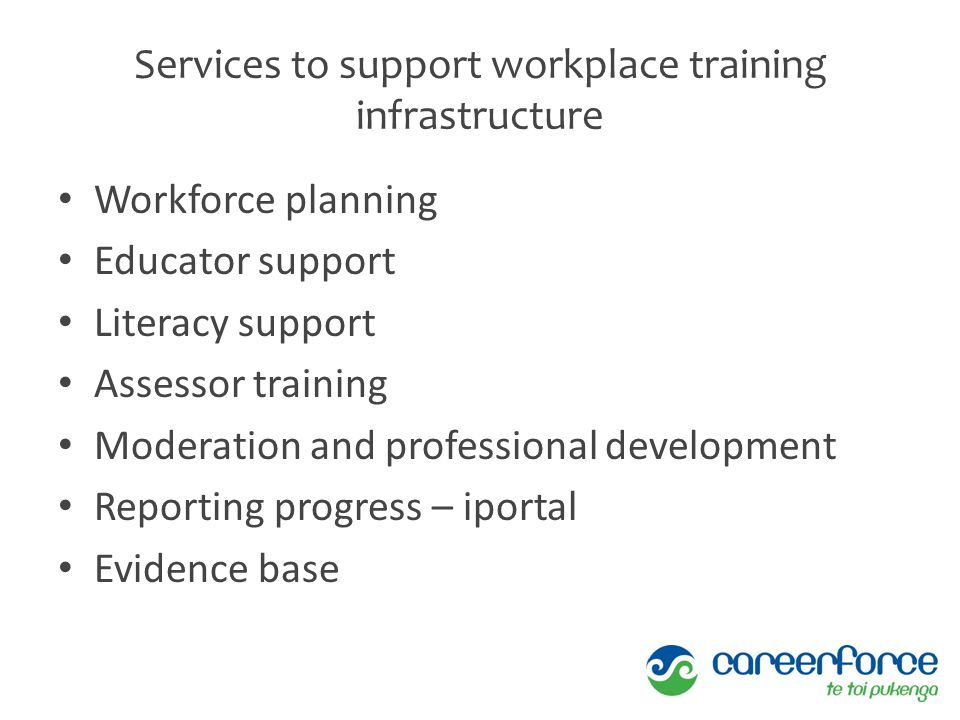 Services to support workplace training infrastructure Workforce planning Educator support Literacy support Assessor training Moderation and profession