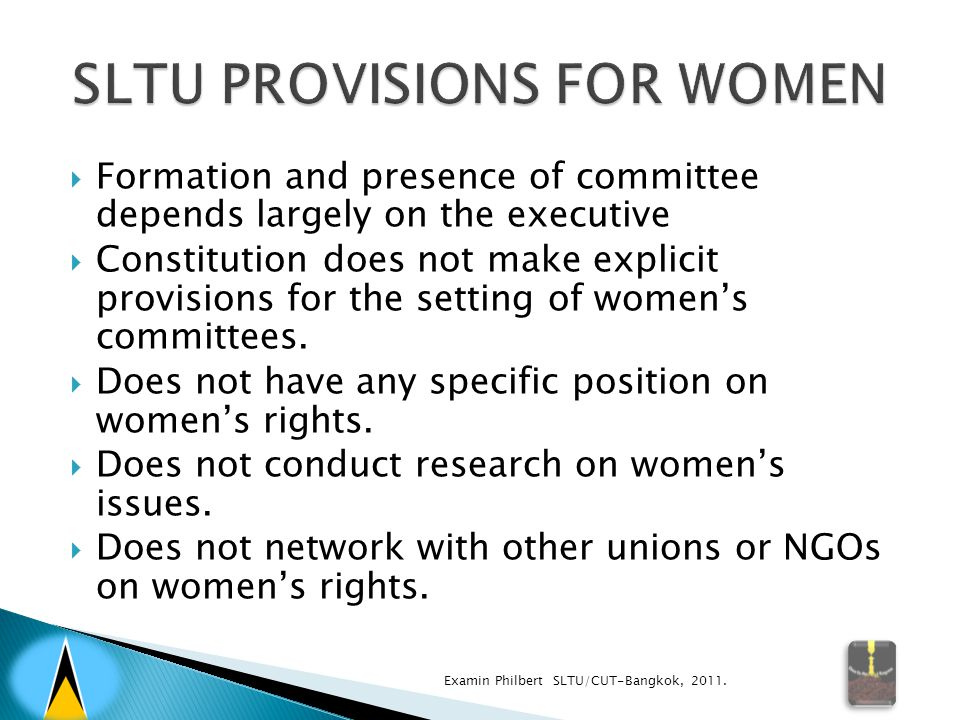  Formation and presence of committee depends largely on the executive  Constitution does not make explicit provisions for the setting of women's committees.