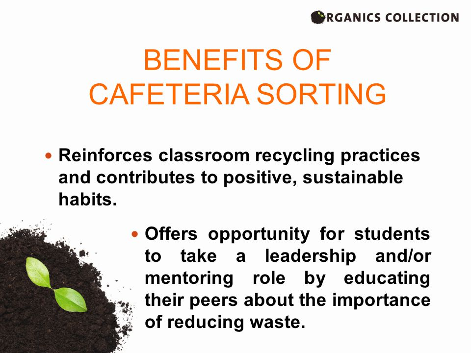 Reinforces classroom recycling practices and contributes to positive, sustainable habits.