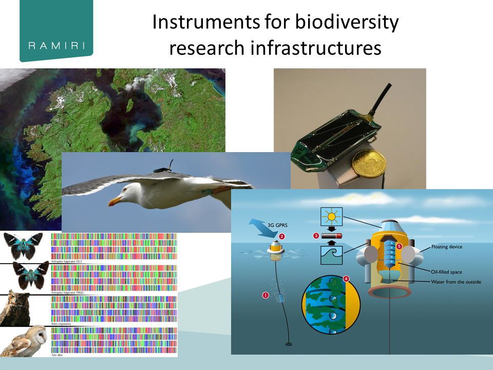 Instruments for biodiversity research infrastructures www.sics.se