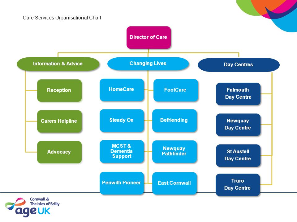 Care Services Organisational Chart