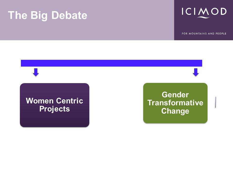 The Big Debate Women Centric Projects Gender Transformative Change